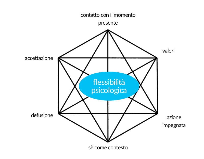 hexaflex act parma
